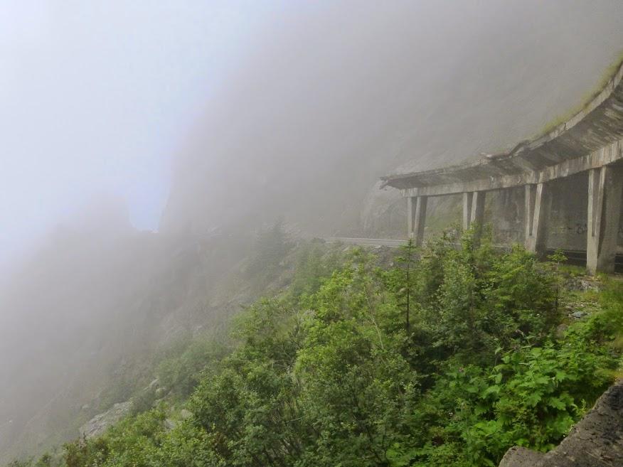 mgła1