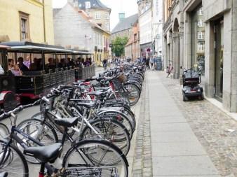 30. Rowery, wszędzie rowery...