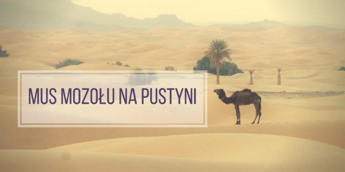mus-mozolu-na-pustyni