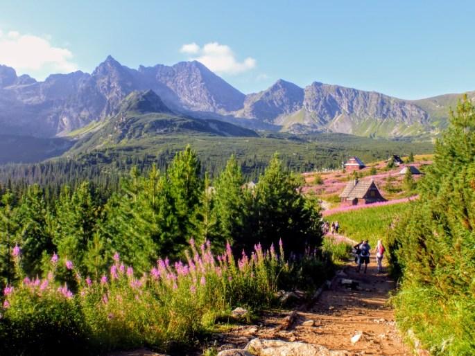 1. Dolina Gąsienicowa
