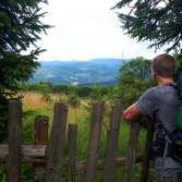 W drodze na przełęcz Beskidek