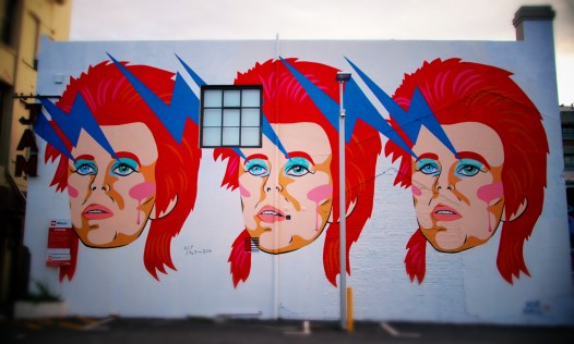 The Bowie Wall Wellington NZ