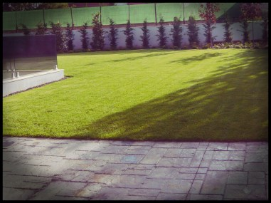 césped jardín aravaca