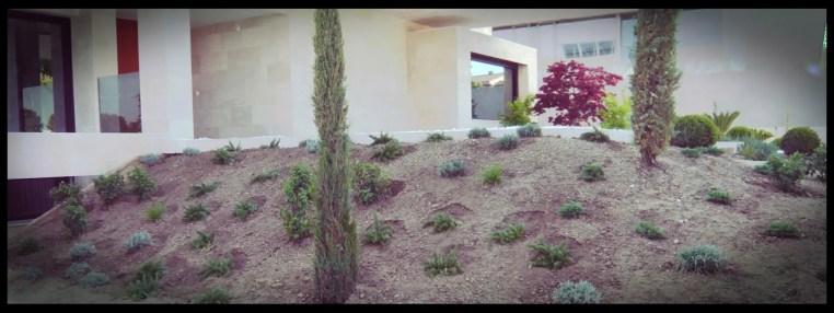plantación talud jardín aravaca esquina