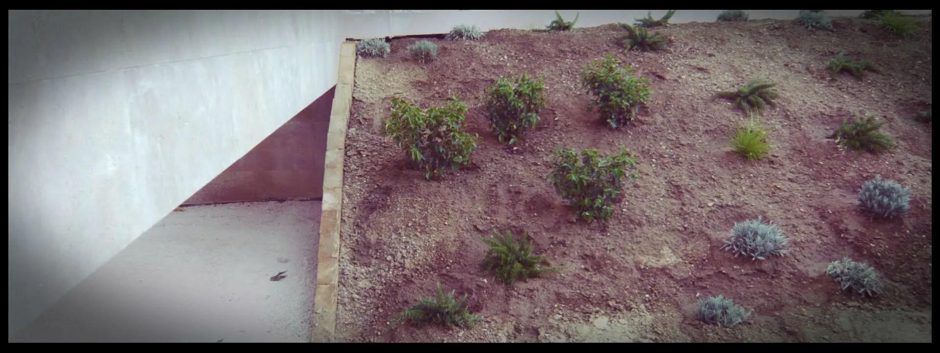 plantación talud jardín aravaca
