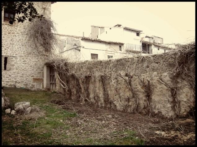 acondicionamiento palacio de Tendilla campsis limpia