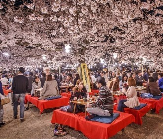 10 Reasons Why You Must Forget Europe and Visit Japan During Spring Season