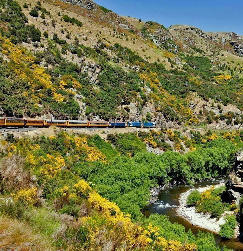 Train and coaches of Taieri Gorge tourist railway runs alongside river in a ravine on its journey up the valley | 7 Awesome Things to Do in New Zealand