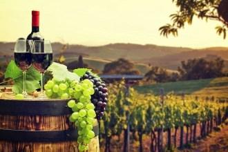 10 Amazing Wine Regions to Visit Before you Die