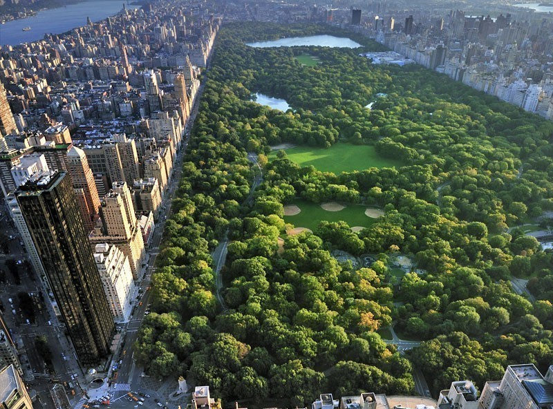 Aerial view of Central Park, Manhattan | TOP 10 Tourist Attractions in New York City