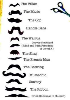 Other Names For Mustache : other, names, mustache, Which, Mustache, Right, Funny, Names, Moustache., Moustaches, Images,, Moustache,, Hilarious,