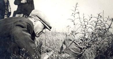 Atatürk Ve Şark Alemi, Ömer Rıza Doğrul, Tan