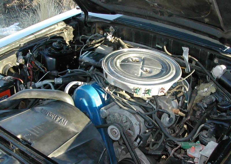 302 Engine Diagram Black 1979 Ford Mustang Hatchback Mustangattitude Com