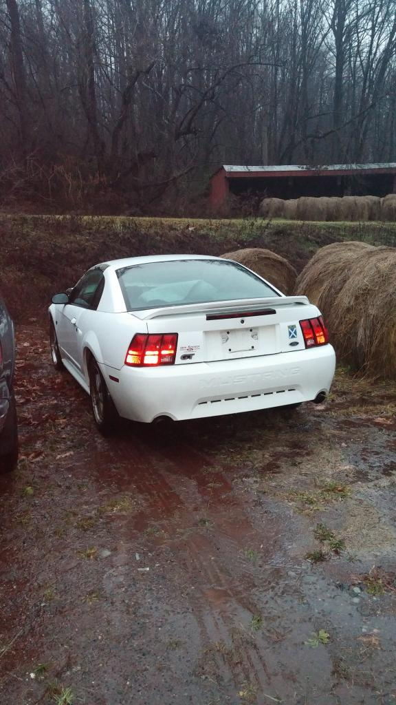 2000 Mustang Gt Parts : mustang, parts, Mustang, WRECKED, Miles, Parting, MustangForums.com