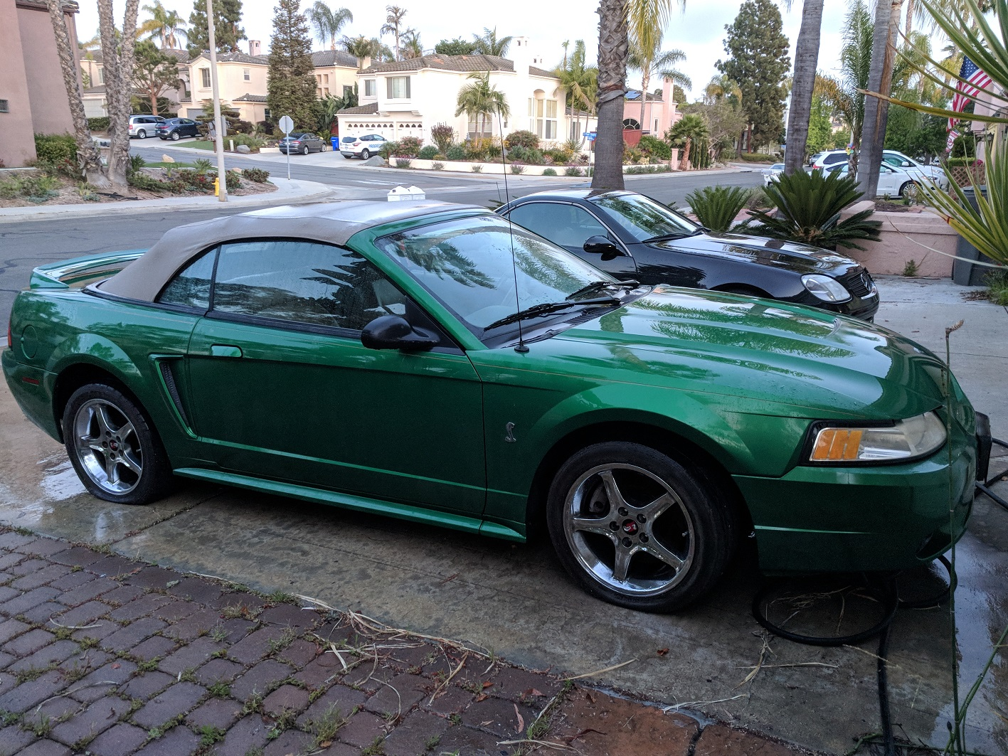hight resolution of engine issue on 1999 cobra repair or sell as is img 20180531 200025 jpg