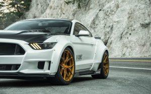VIBE Mustang