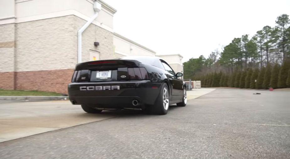 2004 Ford Mustang SVT Terminator Cobra