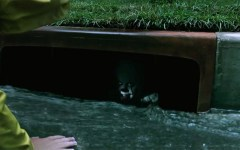 It (2017) Floats to the Top