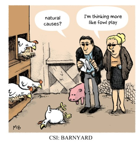 color_0131_barnyard