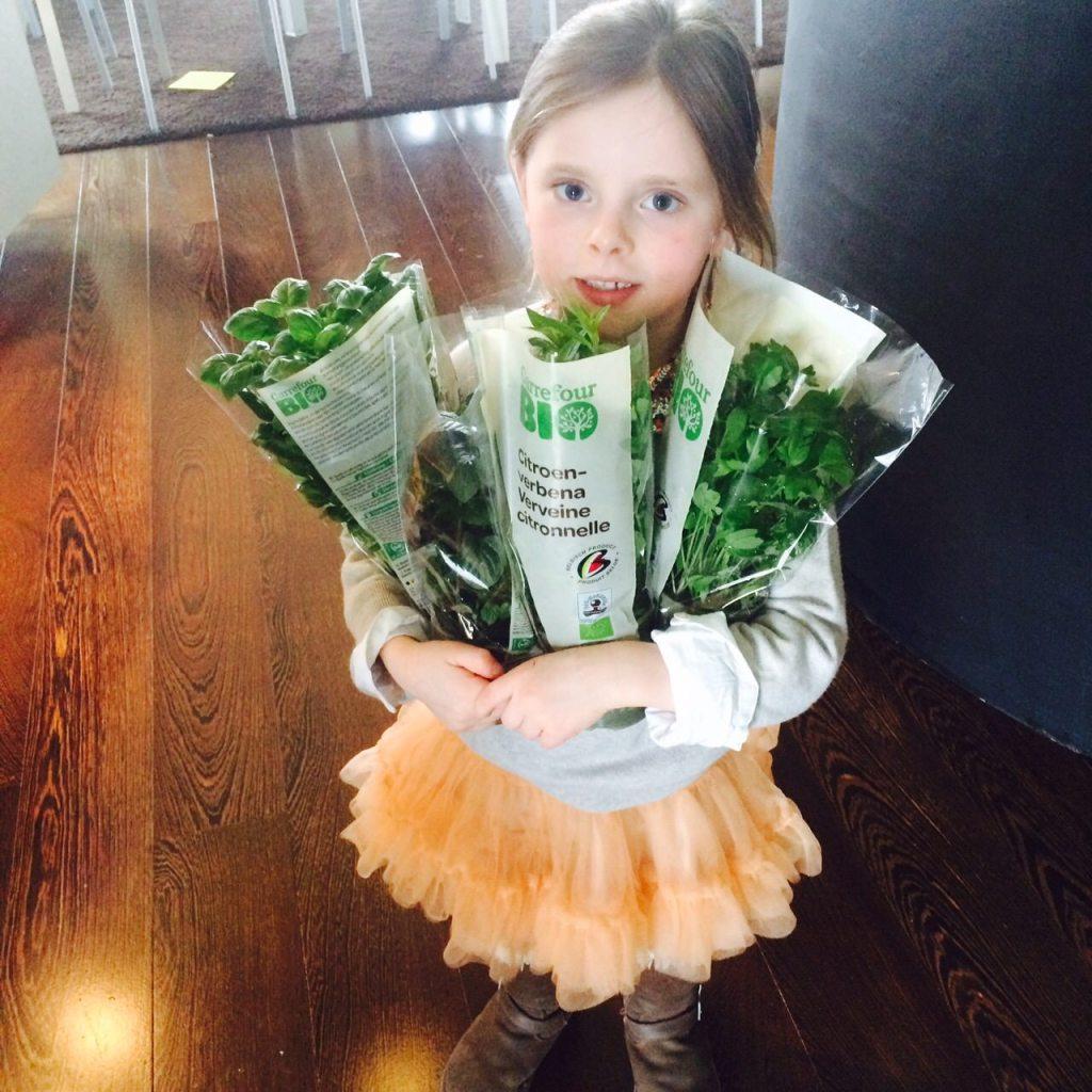 Little Miss Herb