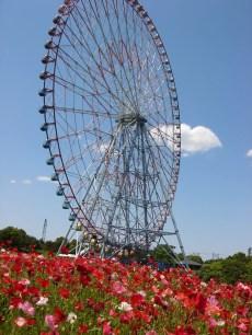 東京旅遊景點-葛西臨海公園&水族館
