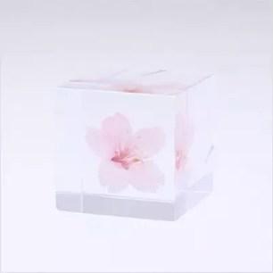「MoMA Design Store」的多款當季櫻花主題系列商品!實用又療癒~