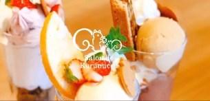 鎌倉紅谷咖啡廳「Salon de Kurumicco」重啟營業!一併推出兩款消暑新餐點