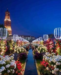長崎縣的豪斯登堡主題公園✿2021年期間限定‧亞洲最大規模「玫瑰祭」
