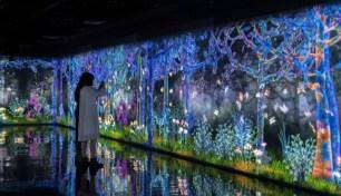 東京‧銀座期間限定展覽「GINZA 456 & teamLab:捕捉並收集超越邊界的群蝶」