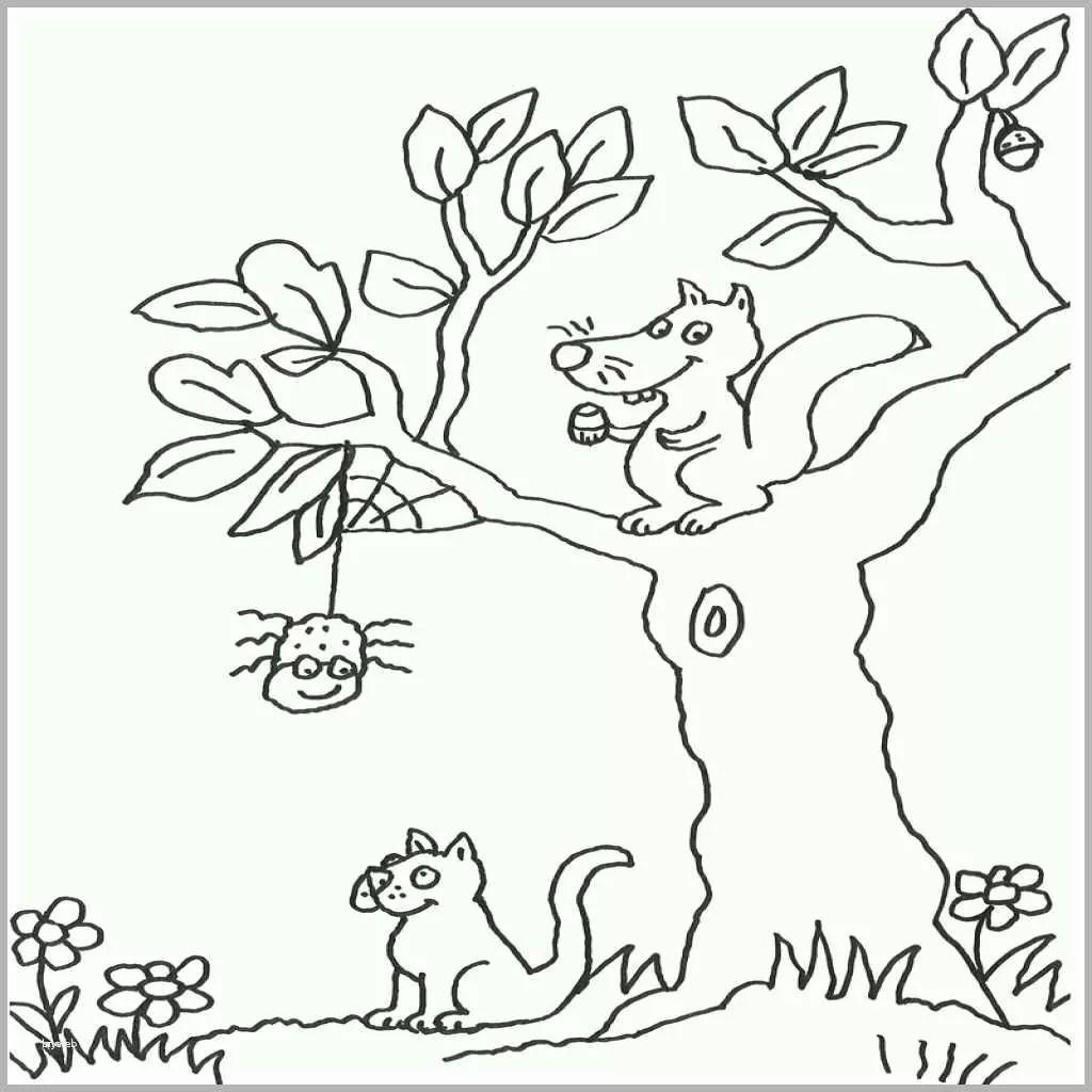 Baum Malvorlage