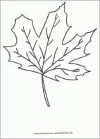 52 original Herbstblätter Vorlagen