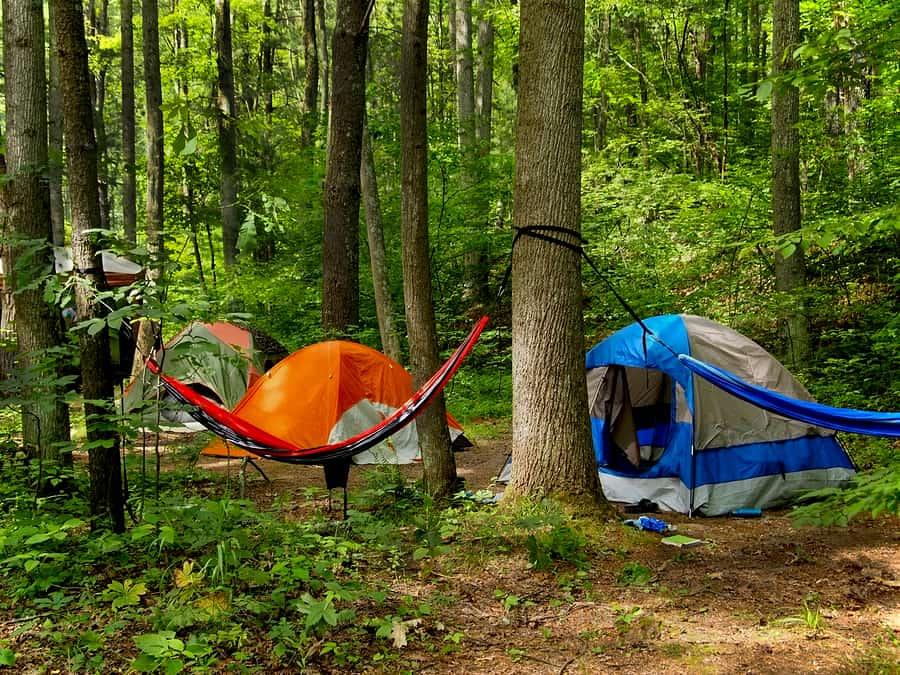 A small grouping of tents and a hammock slung between two trees out in the wilderness. & Ultimate Beginners Guide to Hammock Camping | Must Go Camping
