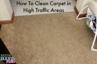 Best Carpet For High Traffic Areas And Pets - Carpet Ideas