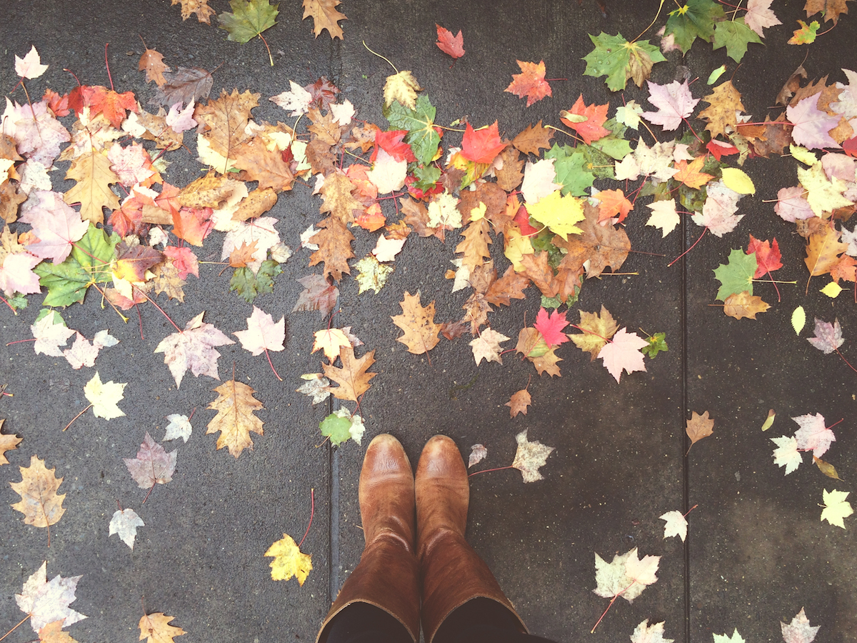 Falling Apart In The Fall Advice For Difficult Seasonal
