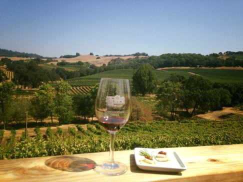 Wine tasting Sonoma california