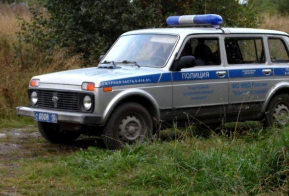 К месту предполагаемой акции протеста была стянута полиция. Фото: Лесной портал Карелии