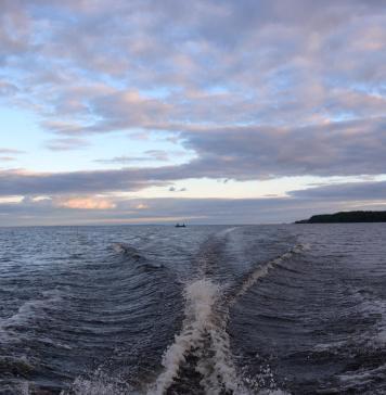 На Онежском озере браконьеры обосновались на самом крупном нерестелище судака. Фото: Алексей Владимиров