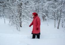 80-летняя защитница Сунского бора идет на дежурство в лес. Фото: Игорь Подгорный