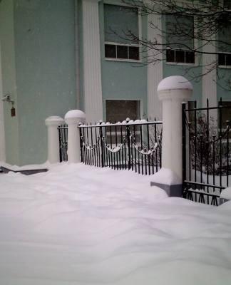 Дом правительства в Петрозаводске. Фото: Черника
