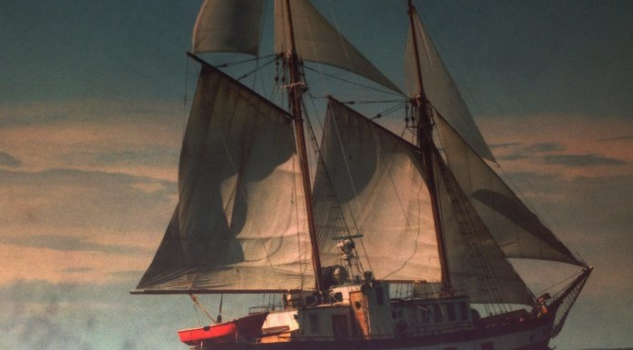 """На яхте """"Надежда"""" когда-то учились флотскому делу юные карельские моряки. Фото: vk.com"""