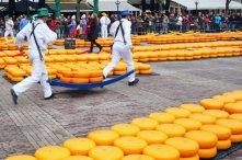 Cheese carrier runs off