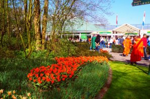 Buddhists love Keukenhof