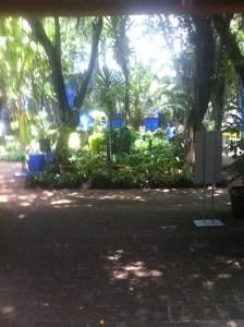 Jardín Central de La Casa Azul