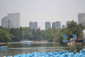 Chapultepec Park's Lake in Mexico City