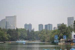 Chapultepec's Woods Park Lake