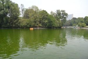 Old lake Chapultepec Park