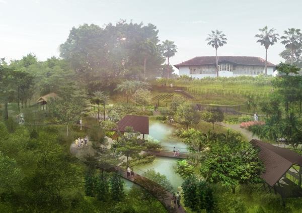 Ethnobotany Garden at Singapore Botanic Garden. Image: National Parks
