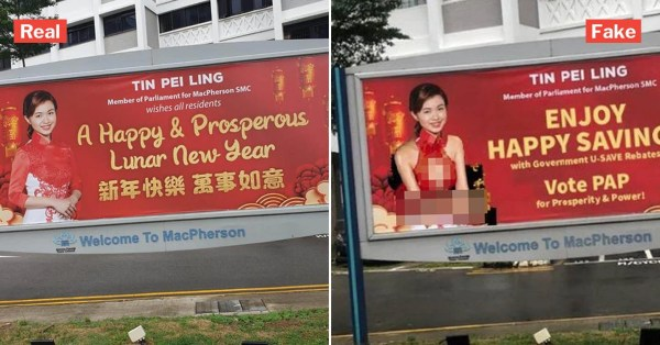 MP Tin Pei Ling Slams Edited CNY Banner Of Her In Skimpy Dress, Urges Not To Spread Fake Photo