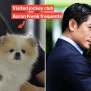 Hk Covid 19 Patient Who Infected Her Dog Has Links To