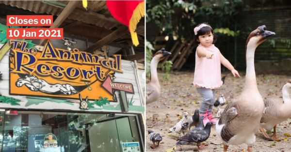 The Animal Resort In Seletar To Close After 20 Years, S'poreans Bid Farewell To Rustic 'Kampung Zoo'
